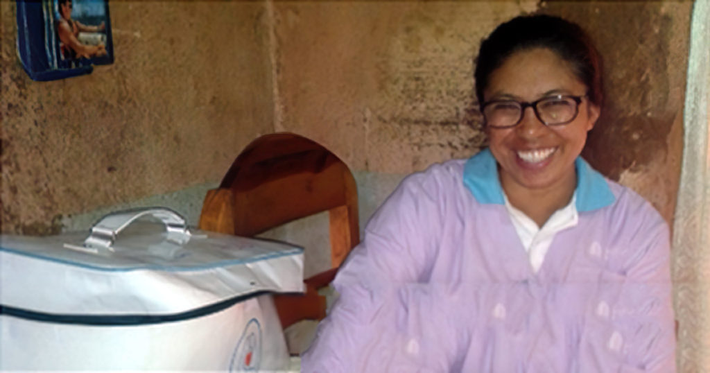 Smartphones and Smart Ladies: Informed Decision Making in Madagascar